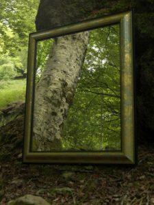 de natuur als spiegel (www.cylex.nl)